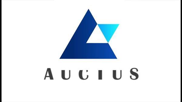 Auctus ICO Scam
