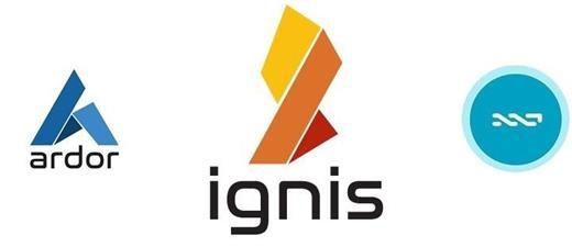 NXT IGNIS ICO Snapshot date