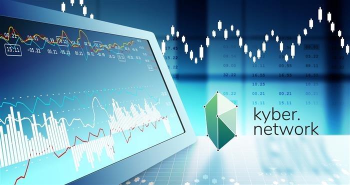Kyber Network Exchange Whitelist form